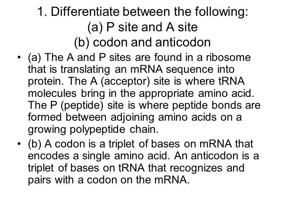 1. Differentiate between the following: (a) P site and A site (b) codon and anticodon