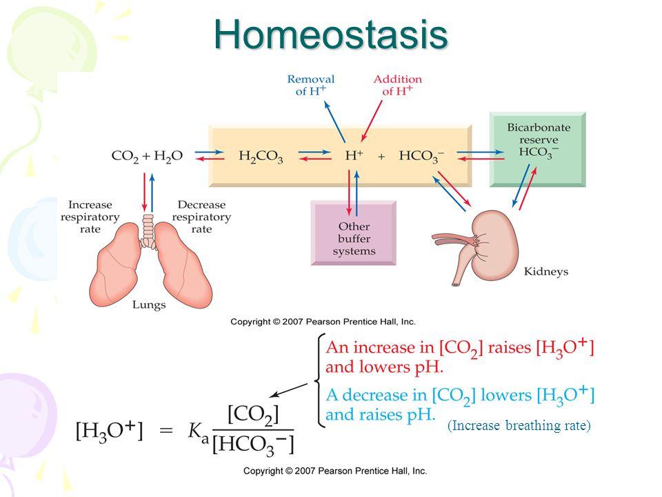 Homeostasis (Increase breathing rate)