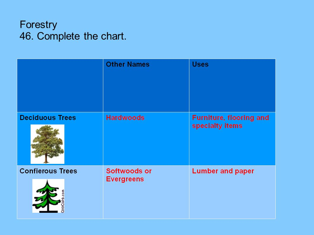 Forestry 46. Complete the chart.
