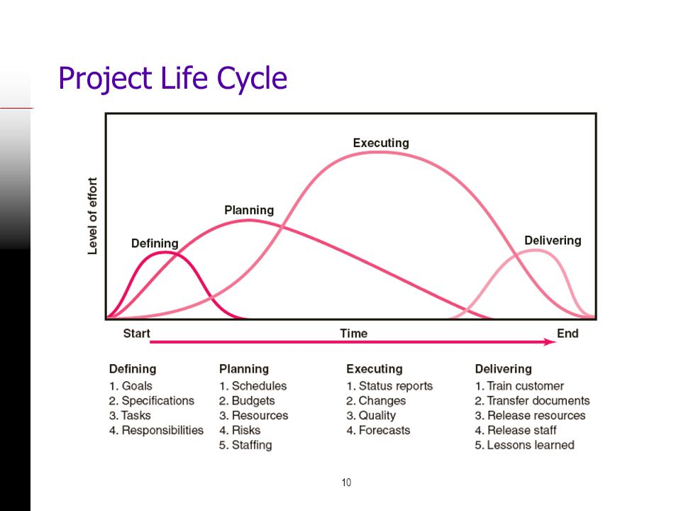 Project Life Cycle FIGURE 1.1
