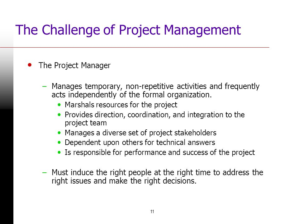 The Challenge of Project Management