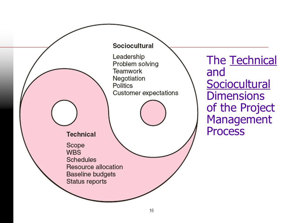 The Technical and Sociocultural Dimensions of the Project Management Process