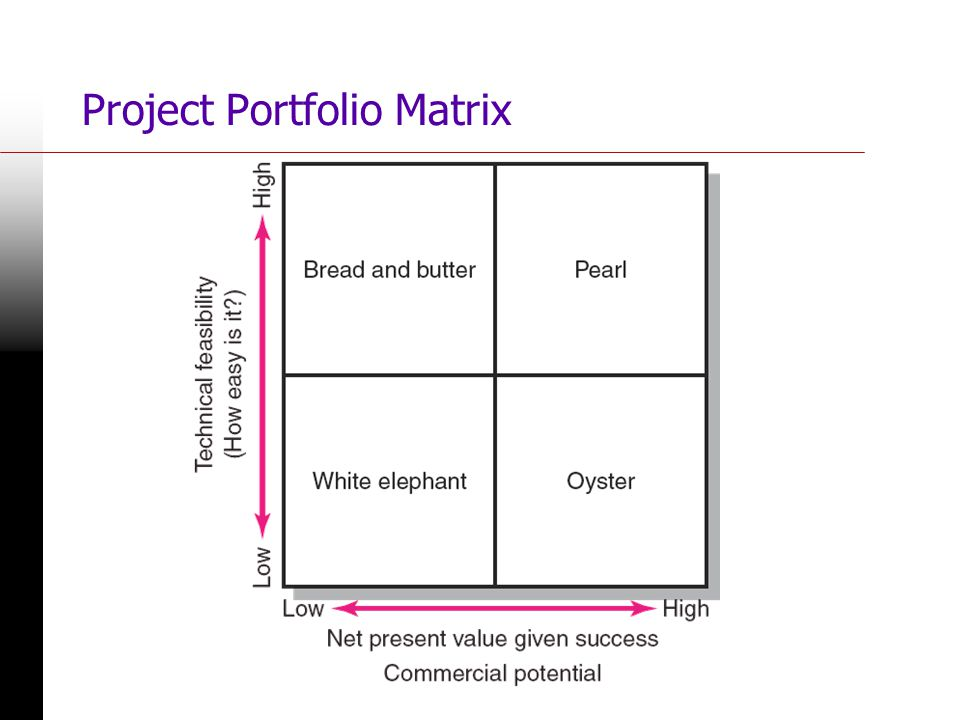 Project Portfolio Matrix