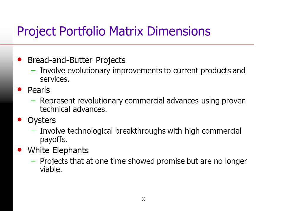 Project Portfolio Matrix Dimensions