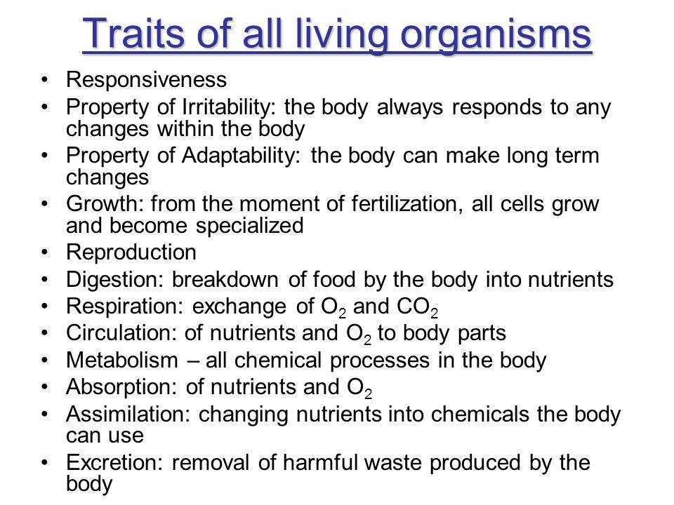Traits of all living organisms