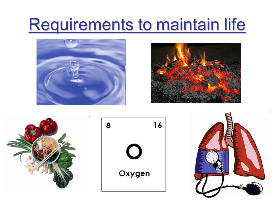 Requirements to maintain life