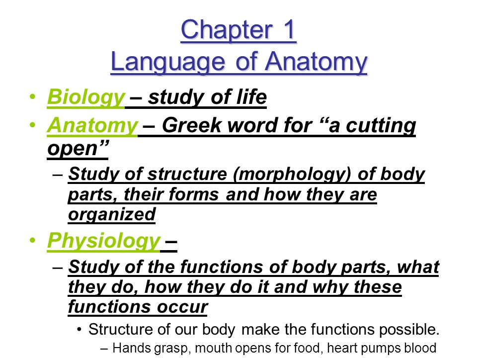 Chapter 1 Language of Anatomy