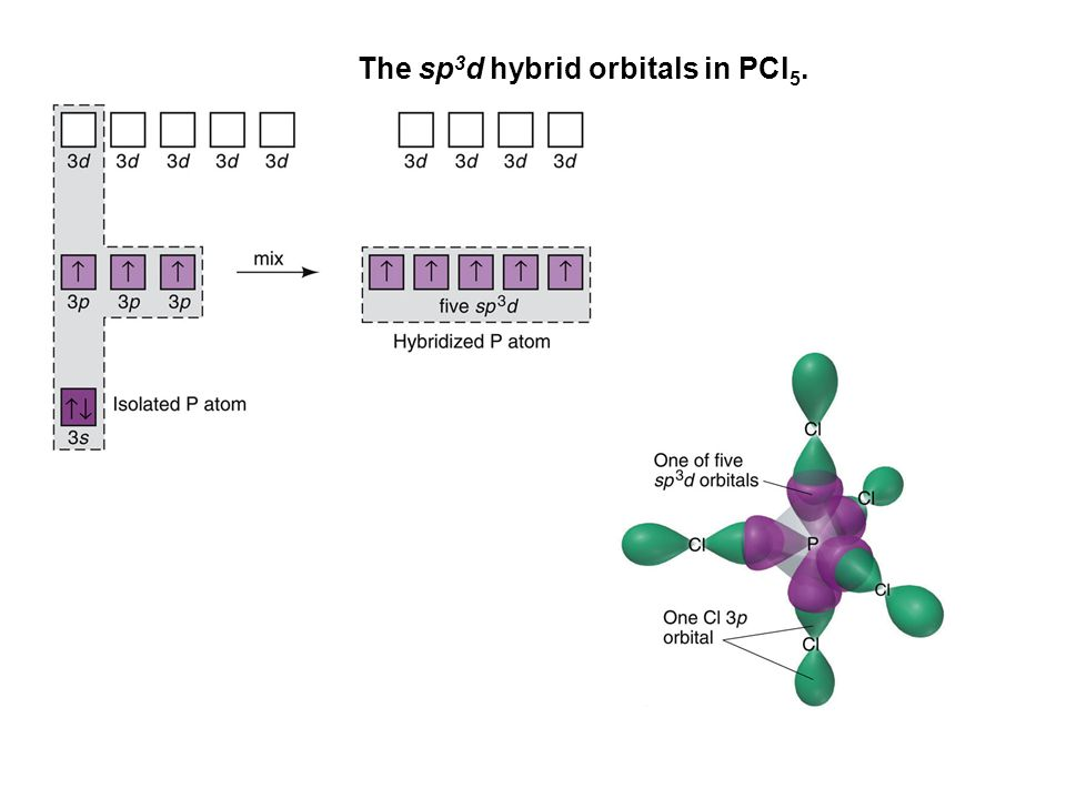 The sp3d hybrid orbitals in PCl5.