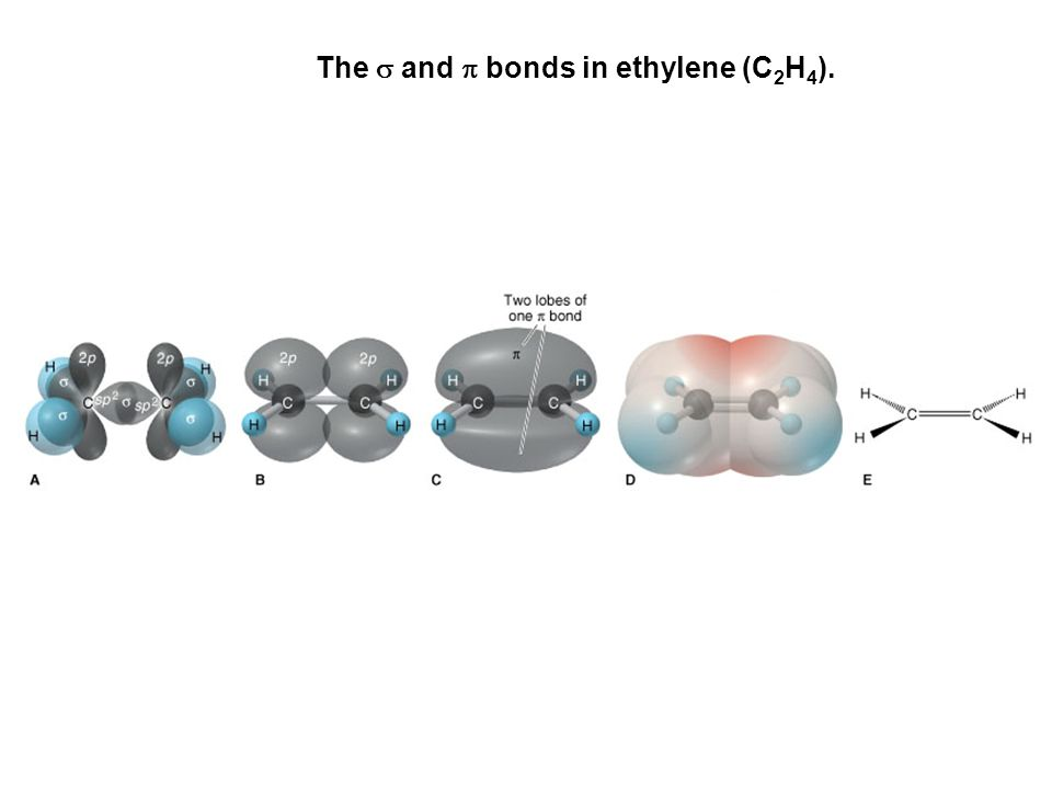 The s and p bonds in ethylene (C2H4).