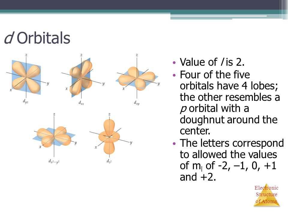 d Orbitals Value of l is 2. Four of the five orbitals have 4 lobes; the other resembles a p orbital with a doughnut around the center.
