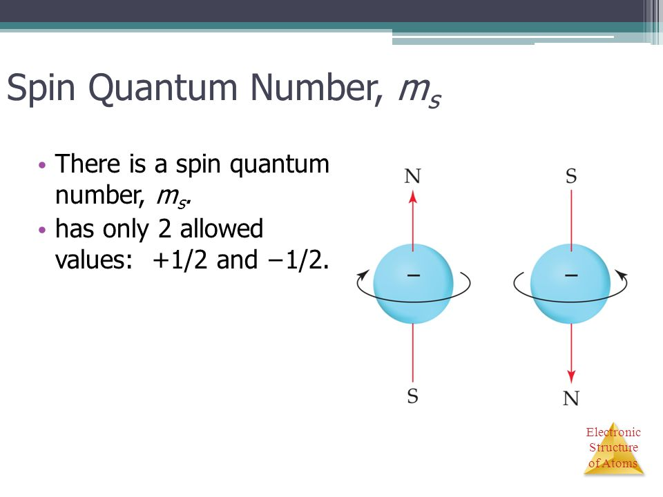 Spin Quantum Number, ms There is a spin quantum number, ms.