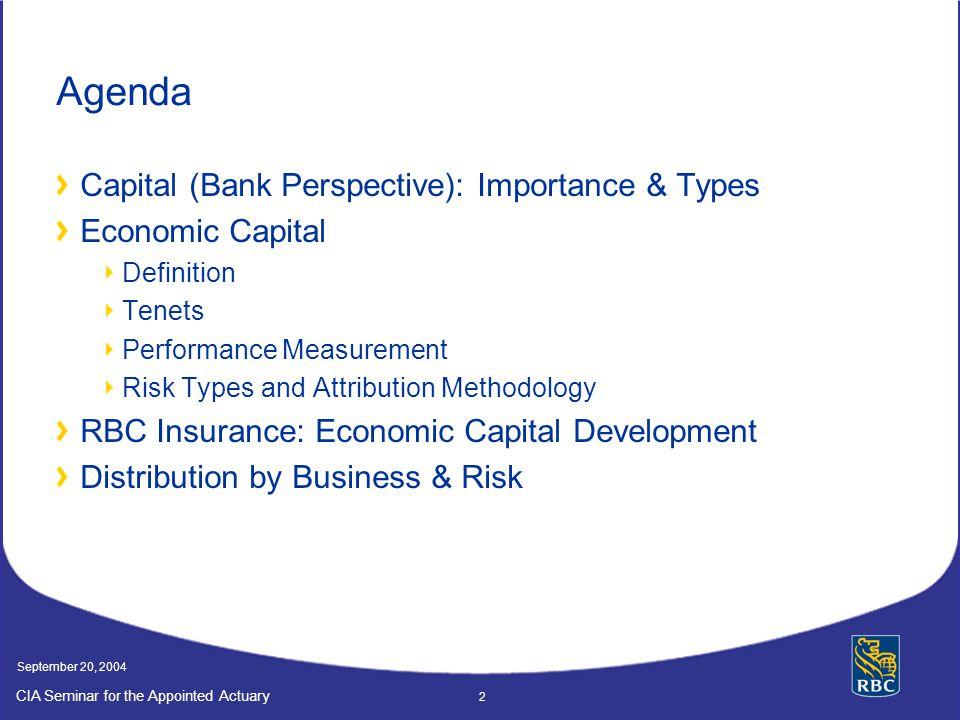 Agenda Capital (Bank Perspective): Importance & Types Economic Capital
