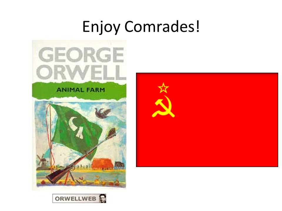 Enjoy Comrades!
