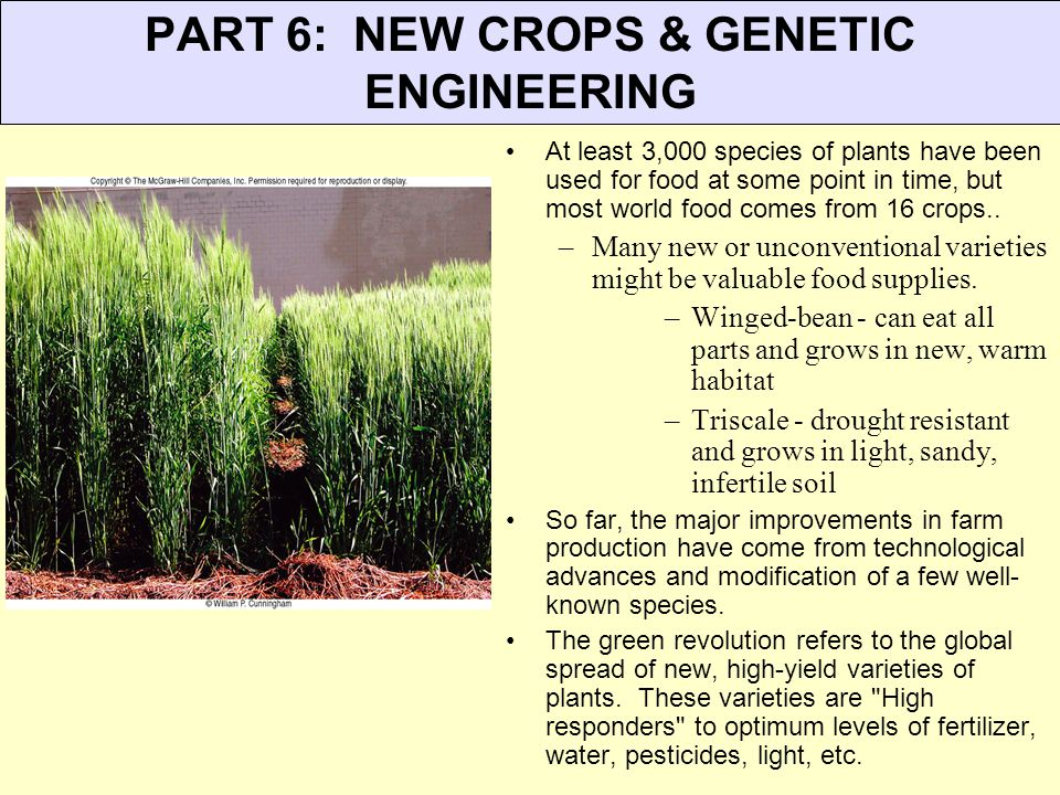 PART 6: NEW CROPS & GENETIC ENGINEERING