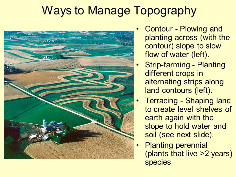 Ways to Manage Topography