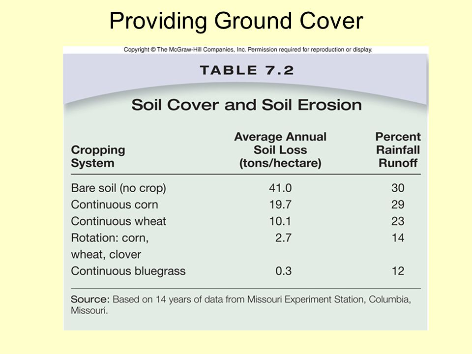 Providing Ground Cover