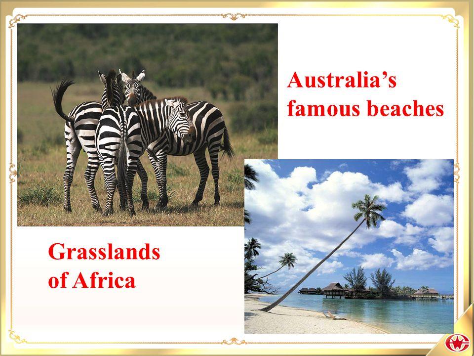 Australia's famous beaches