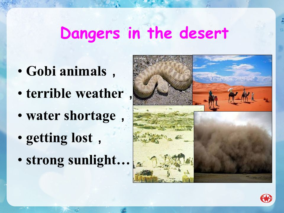 Dangers in the desert Gobi animals, terrible weather, water shortage,