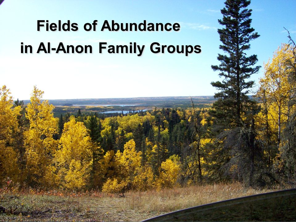 in Al-Anon Family Groups