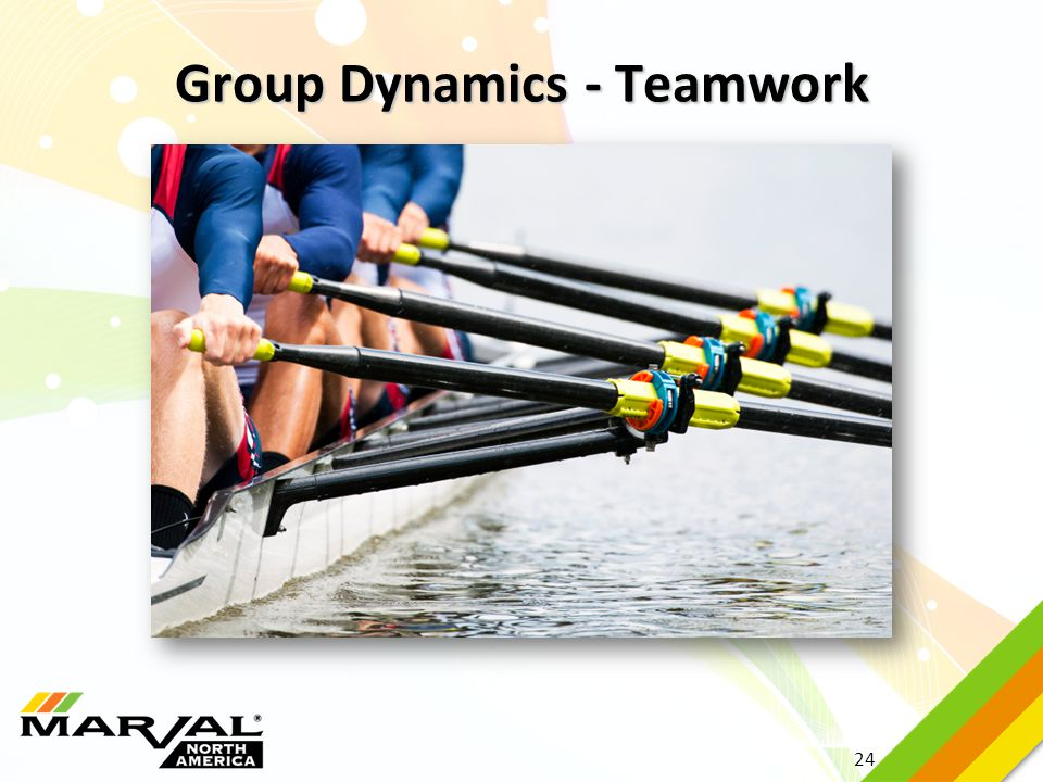 Group Dynamics - Teamwork