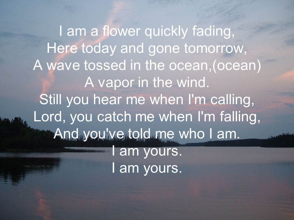 I am a flower quickly fading, Here today and gone tomorrow, A wave tossed in the ocean,(ocean) A vapor in the wind.