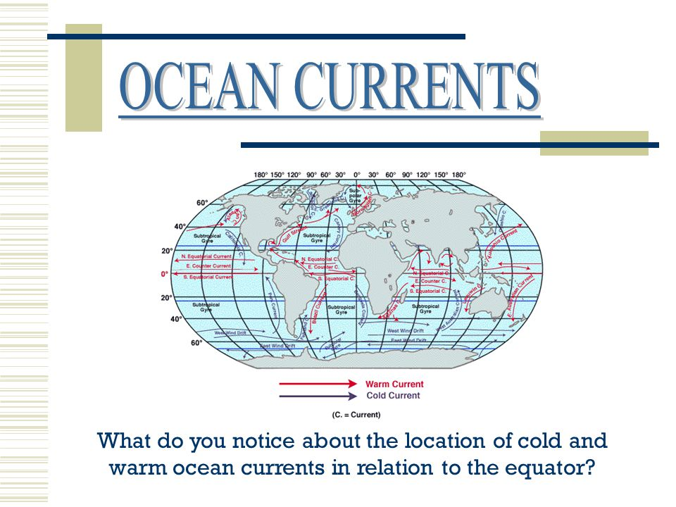 OCEAN CURRENTS What do you notice about the location of cold and warm ocean currents in relation to the equator