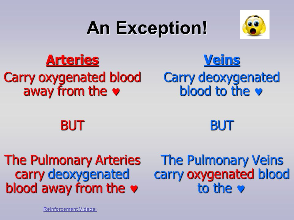 An Exception! Arteries Carry oxygenated blood away from the  BUT