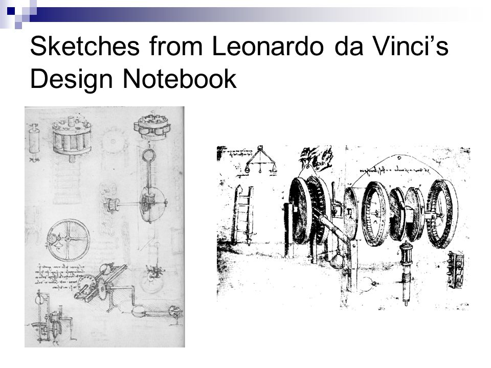 Sketches from Leonardo da Vinci's Design Notebook