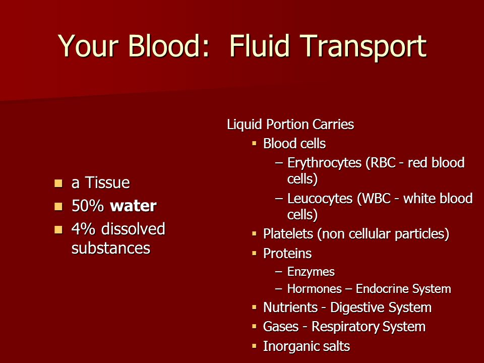 Your Blood: Fluid Transport