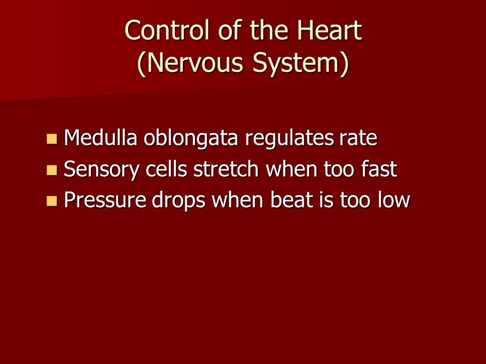 Control of the Heart (Nervous System)