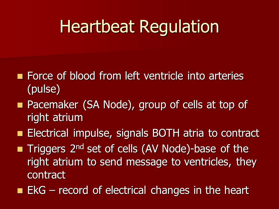 Heartbeat Regulation Force of blood from left ventricle into arteries (pulse) Pacemaker (SA Node), group of cells at top of right atrium.