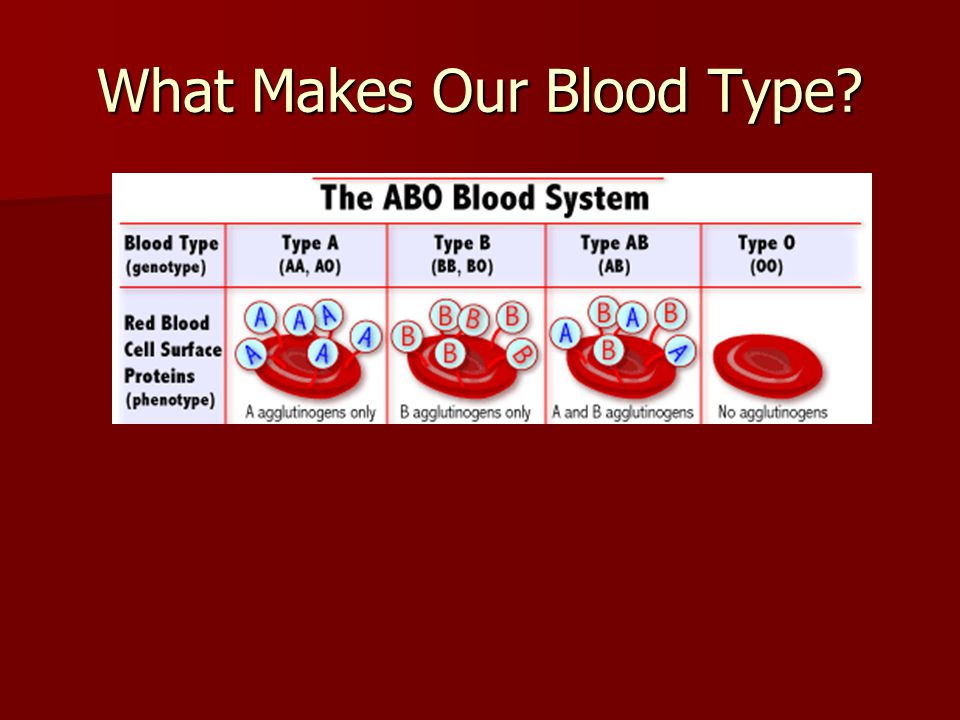 What Makes Our Blood Type