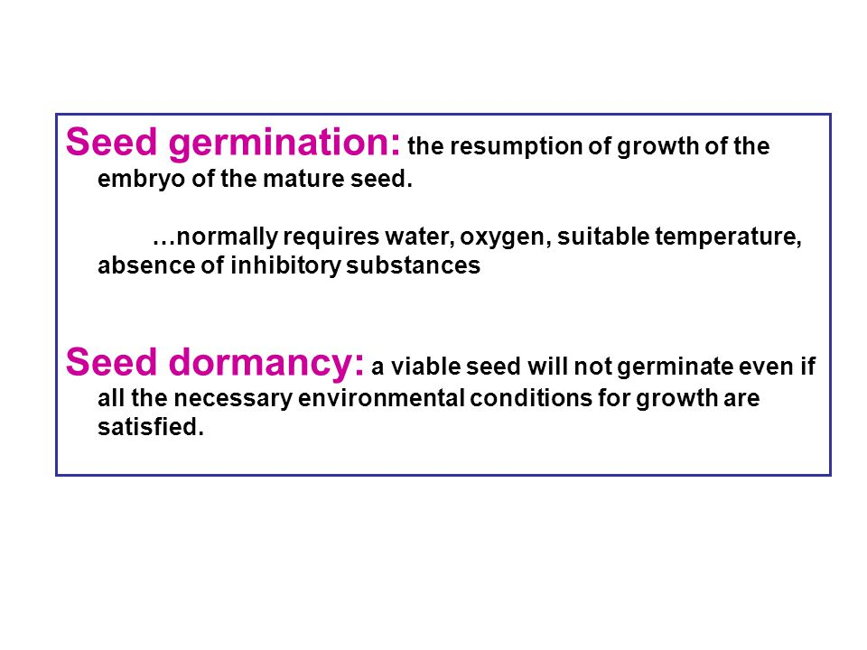 Seed germination: the resumption of growth of the embryo of the mature seed.