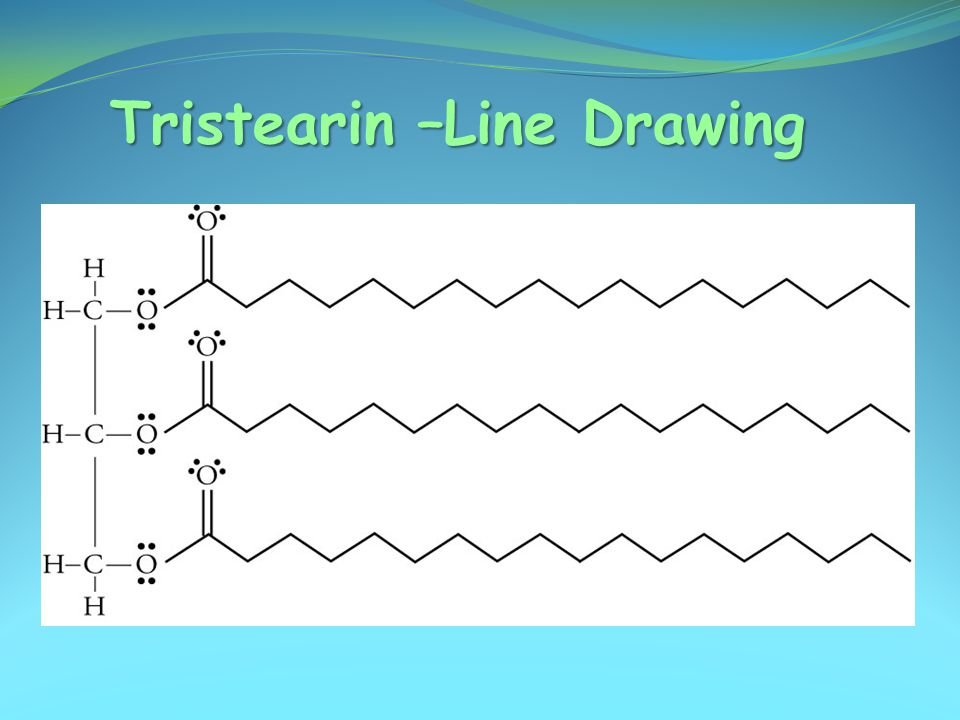 Tristearin –Line Drawing