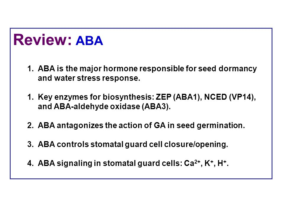 Review: ABA ABA is the major hormone responsible for seed dormancy and water stress response.