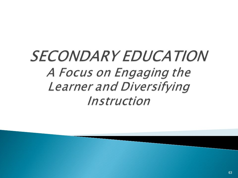 SECONDARY EDUCATION A Focus on Engaging the Learner and Diversifying Instruction