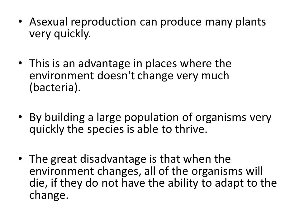 Asexual reproduction can produce many plants very quickly.