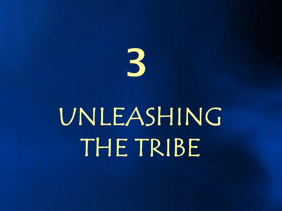 3 UNLEASHING THE TRIBE