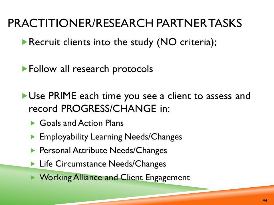 Practitioner/Research Partner Tasks