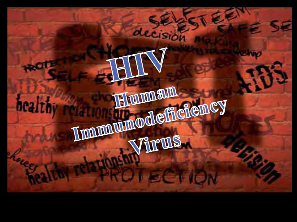 HIV Human Immunodeficiency Virus