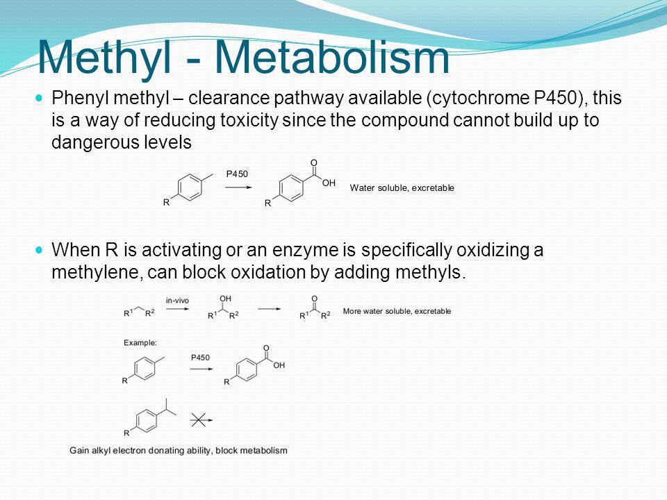 Methyl - Metabolism