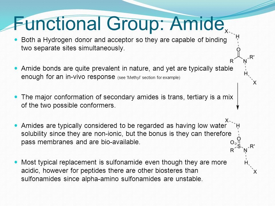 Functional Group: Amide