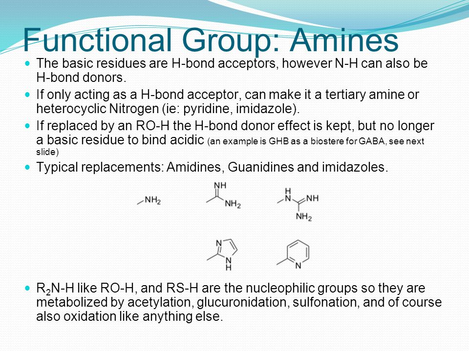 Functional Group: Amines