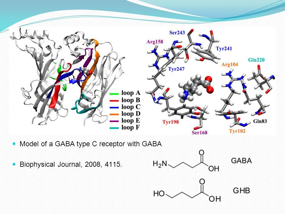 Model of a GABA type C receptor with GABA
