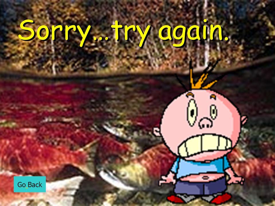 Sorry…try again. Go Back