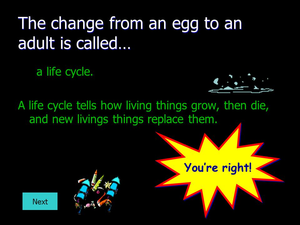 The change from an egg to an adult is called…