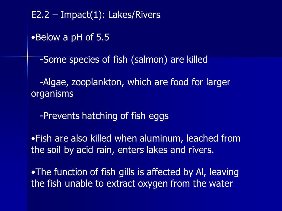 E2.2 – Impact(1): Lakes/Rivers