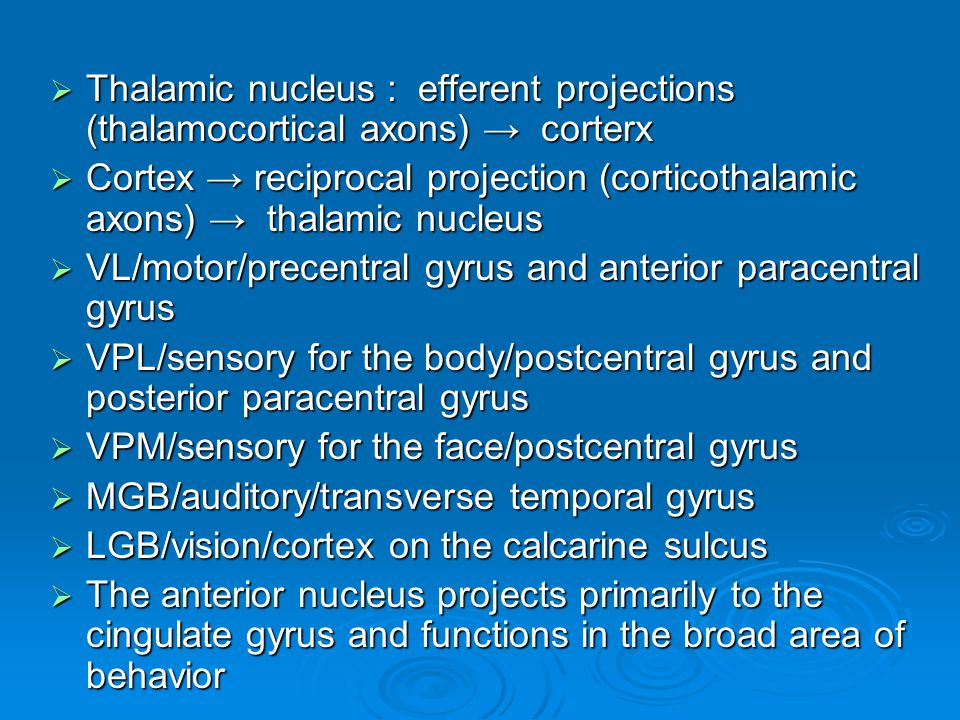 Thalamic nucleus : efferent projections (thalamocortical axons) → corterx