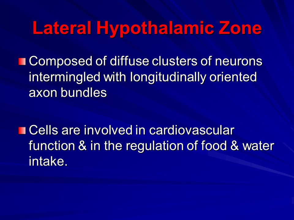 Lateral Hypothalamic Zone
