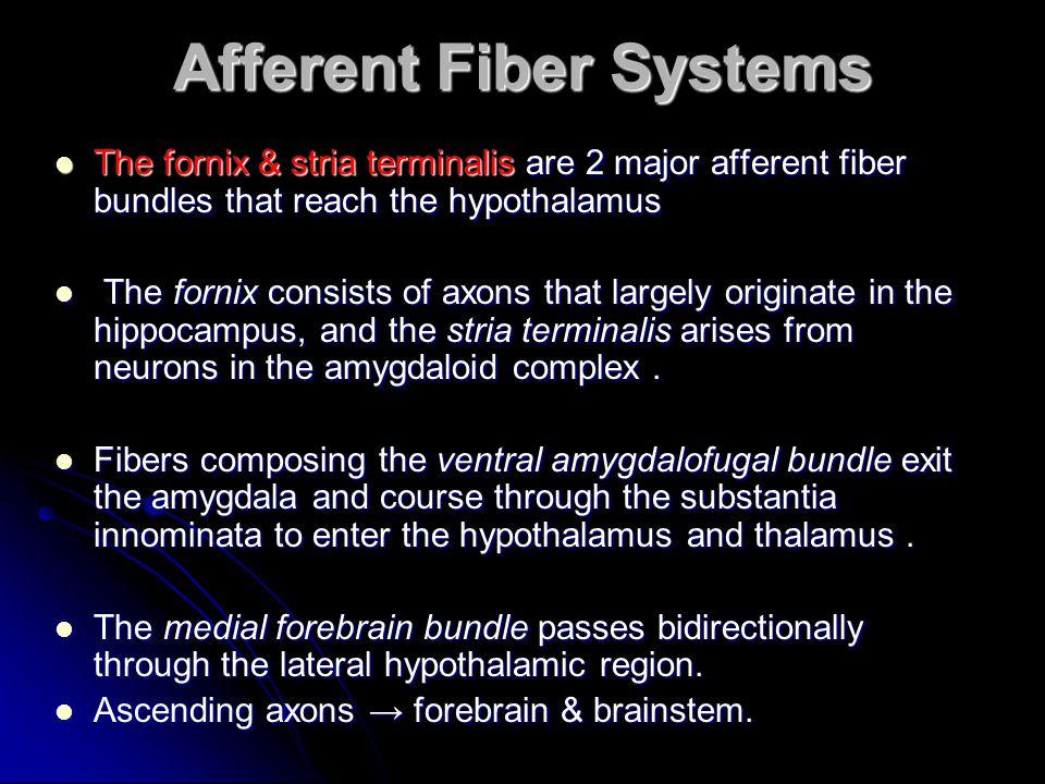 Afferent Fiber Systems